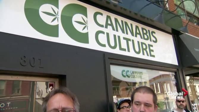 CannabisCulture Montréal