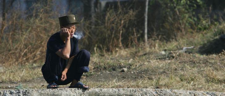 Corée du Nord Cannabis