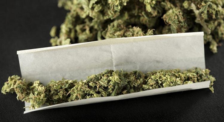 Cadeaux de Noël sur le cannabis