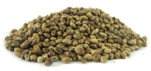 graines-cannabis