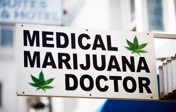 10 études cannabis médical 2016
