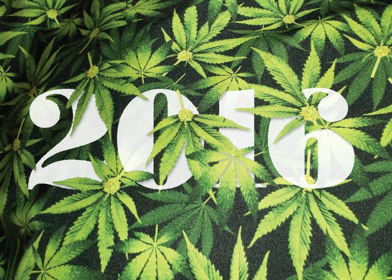 Bilan de l'année 2016 du cannabis
