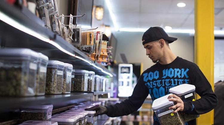 Combien d'emplois l'industrie du cannabis