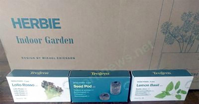 Herbie Door Garden