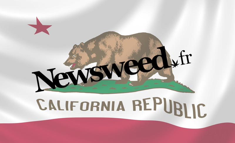 Newsweed en Californie