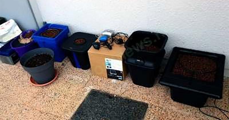 Pots pour l'hydroponique