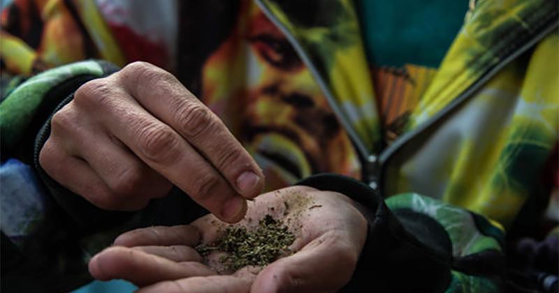 Cannabis au Brésil