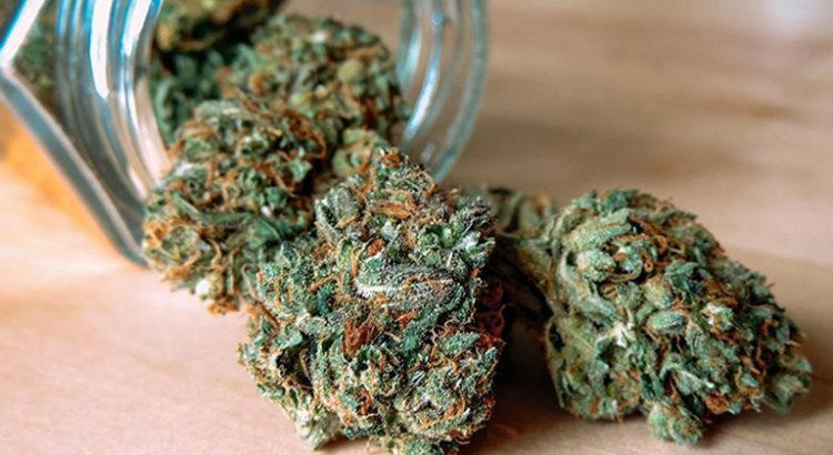 Hépatite C et cannabis