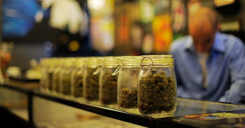 Distribution de cannabis en Allemagne