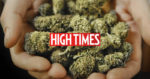 Menaces sur la prochaine Cannabis Cup