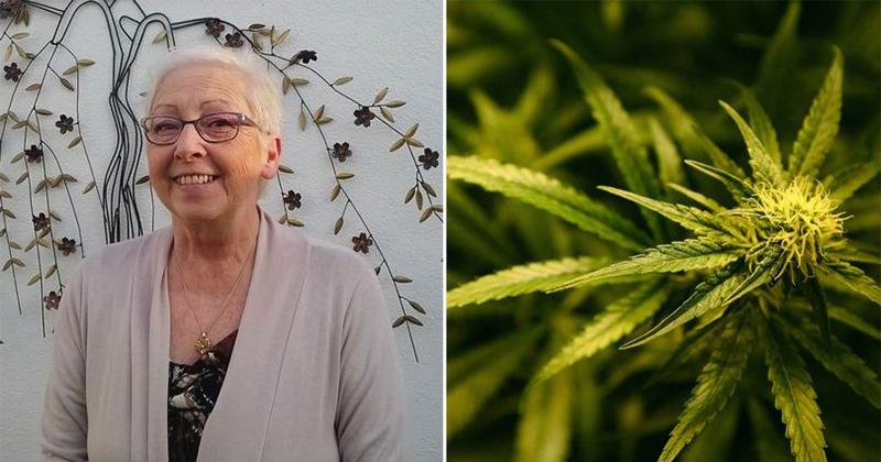 Cannabis médical au Pays de Galles