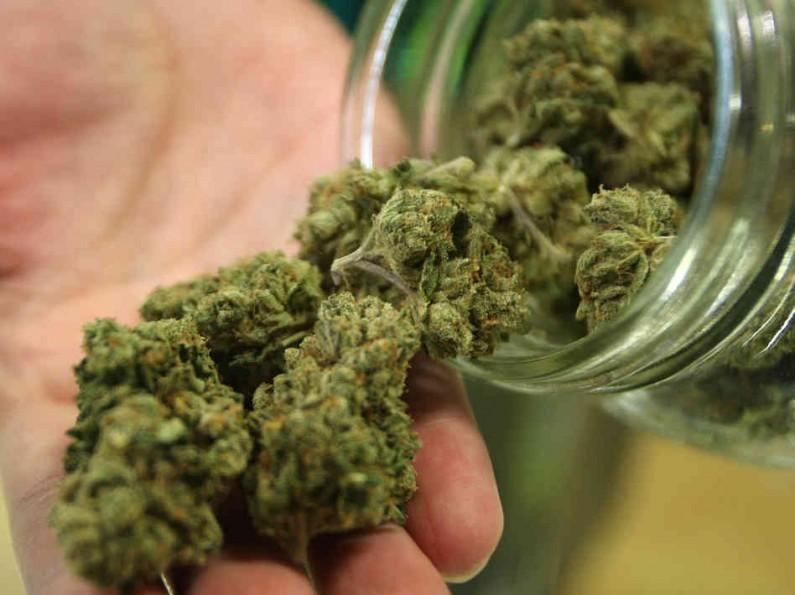 Les Australiens épileptiques se tourne vers le cannabis thérapeutique