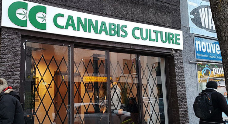 Fermeture Cannabis Culture