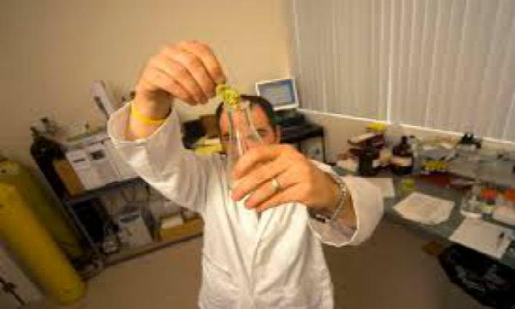 Un laboratoire d'analyse accuse de gonfler les taux de THC