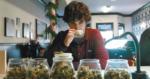 Etats Unis : les chercheurs rappellent les risques de la consommation de cannabis chez les adolescents
