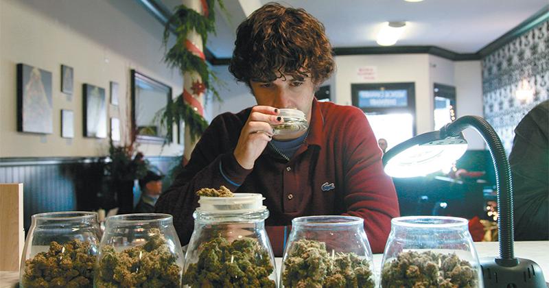 Risques de la consommation de cannabis