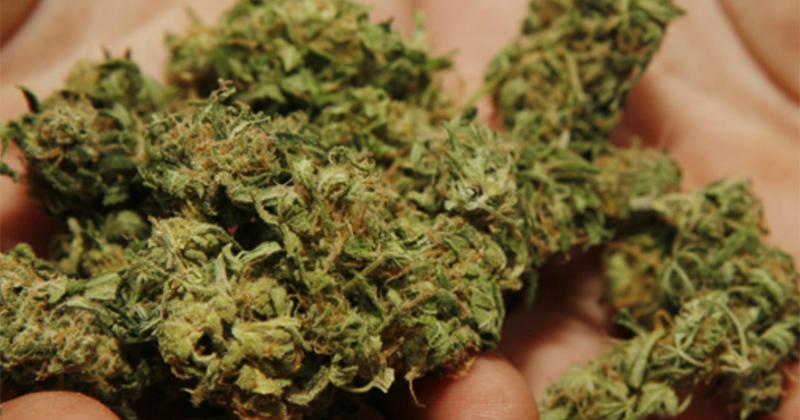 Cannabis au Royaume-Uni
