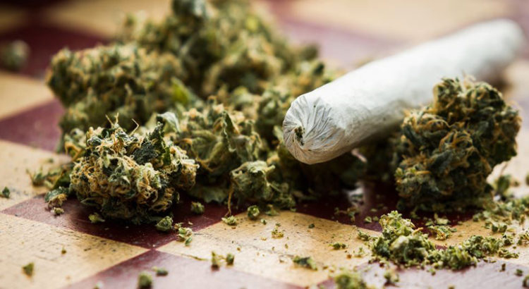 Casier criminel et cannabis au Canada et en Californie