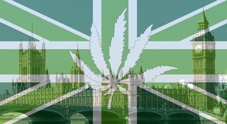 Comment marcherait l'industrie si le Royaume-Uni légalisait le cannabis?