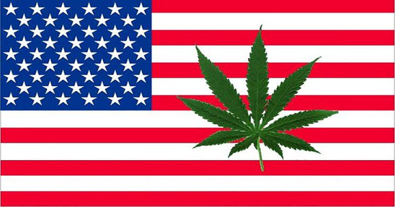 Etats Unis Top 10 des choses qui ont changées (ou non) sur le cannabis en 5 ans