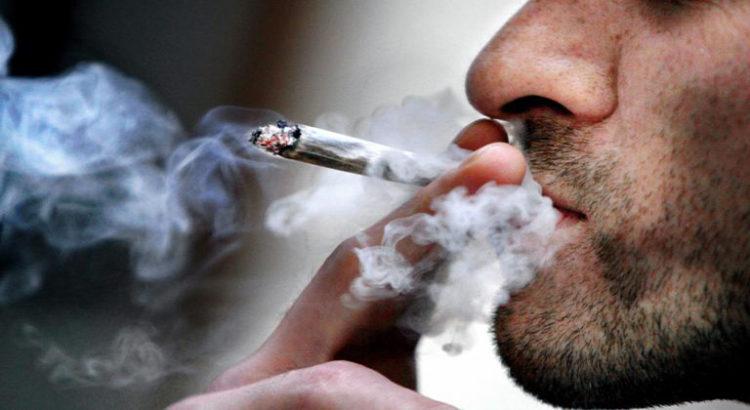 L'OFDT révèle les chiffres de consommation de cannabis chez les adultes français