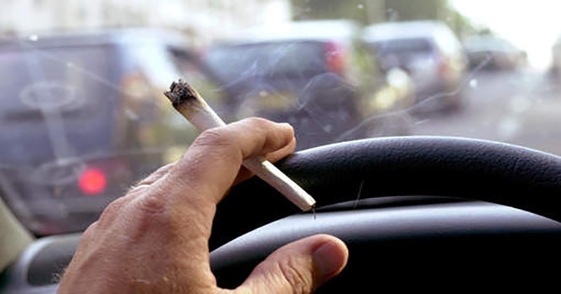 La légalisation du cannabis augmente elle les accidents de la route?