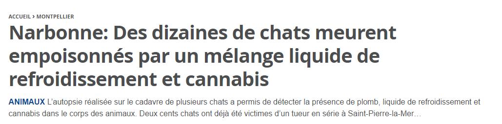 Chats empoisonnés au cannabis