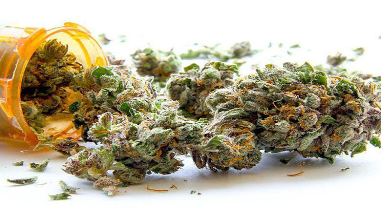 Une nouvelle étude vient confirmer les bienfaits du cannabis thérapeutique