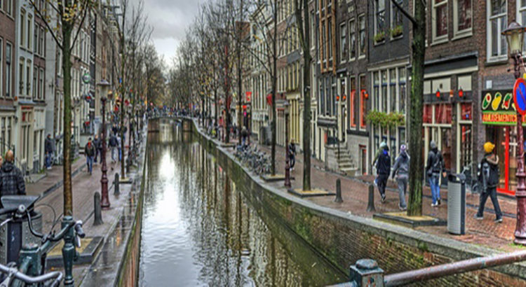 Roots Coffeeshop - le nouveau coffeeshop d'Amsterdam vient d'ouvrir ses portes