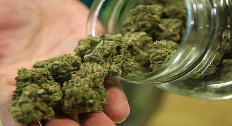 Dans le Maine, du cannabis gratuit pour nettoyer les déchets