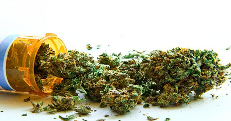 Qu'est vraiment le cannabis médical