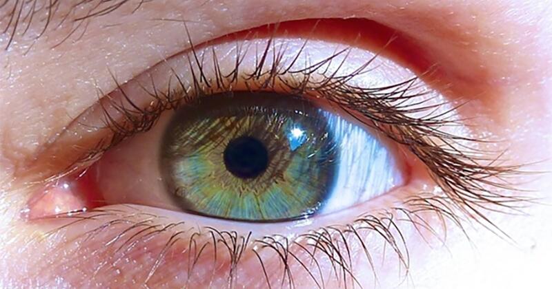Cannabis et yeux