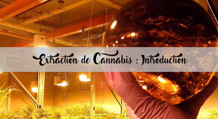 Extraction de cannabis