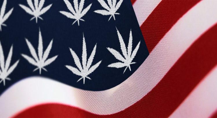 Ventes de cannabis aux Etats-Unis - Le bilan mi-annuel