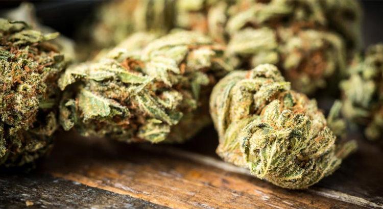 Cannabis Club à Mons (Belgique)