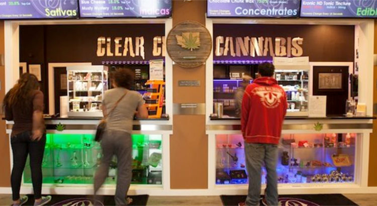 Trouver un métier dans le cannabis