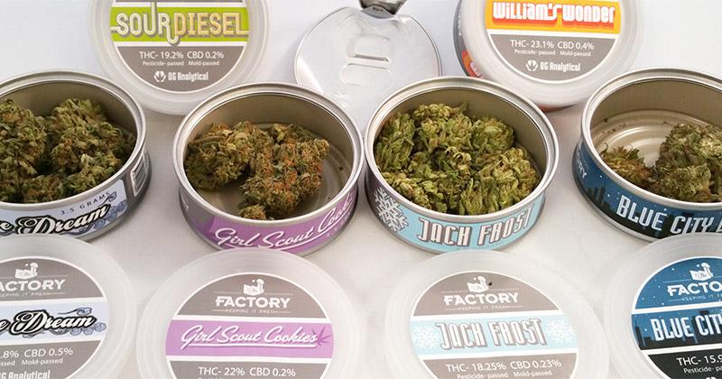 Cannabis en conserve