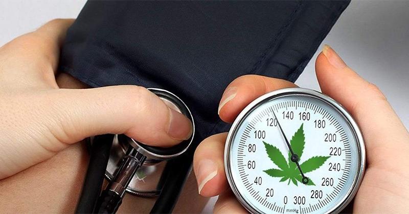 Hypertension et cannabis