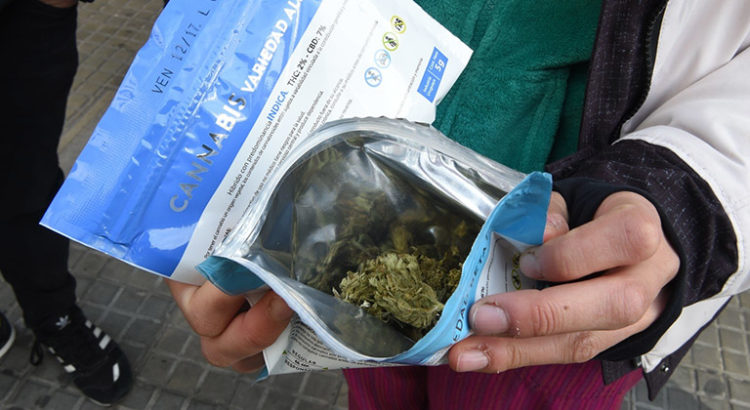 Pénurie de cannabis en Uruguay
