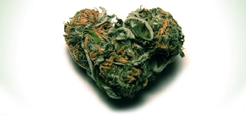 Insuffisance cardiaque et cannabis