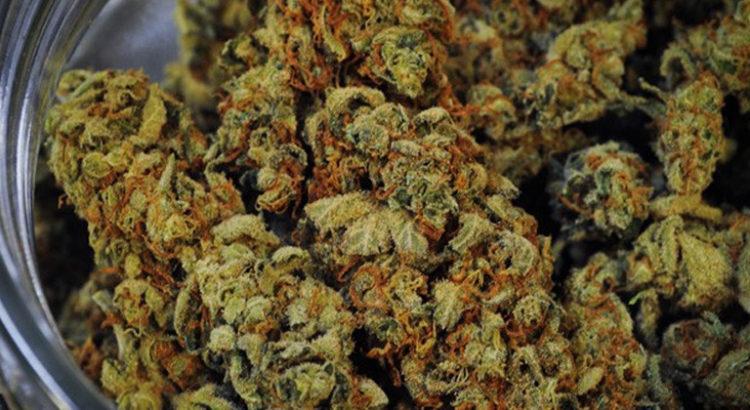 Cannabis médical en Lituanie