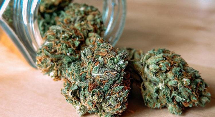 Cannabis médical en Islande