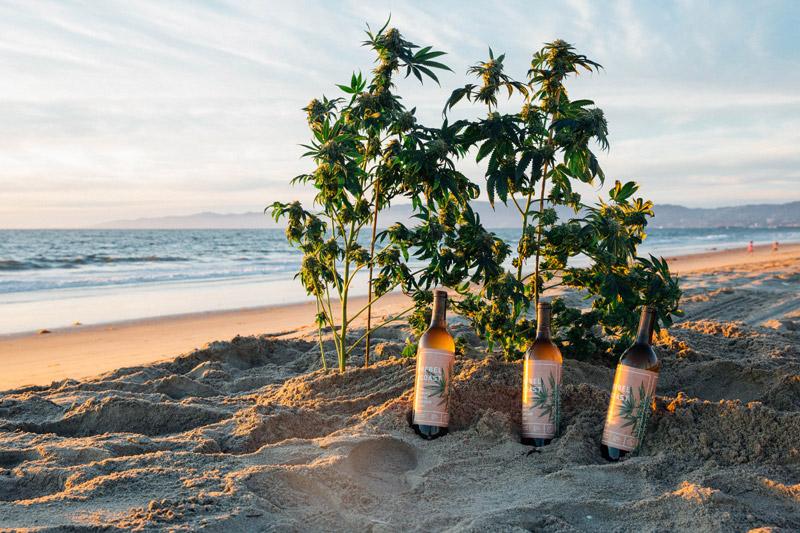 Vin au cannabis