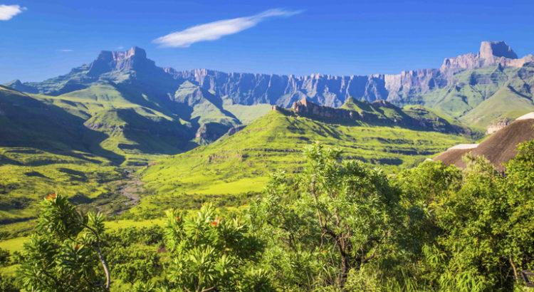 Légalisation du cannabis en Afrique
