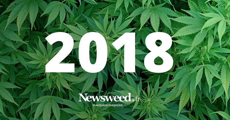 Année 2018 Newsweed