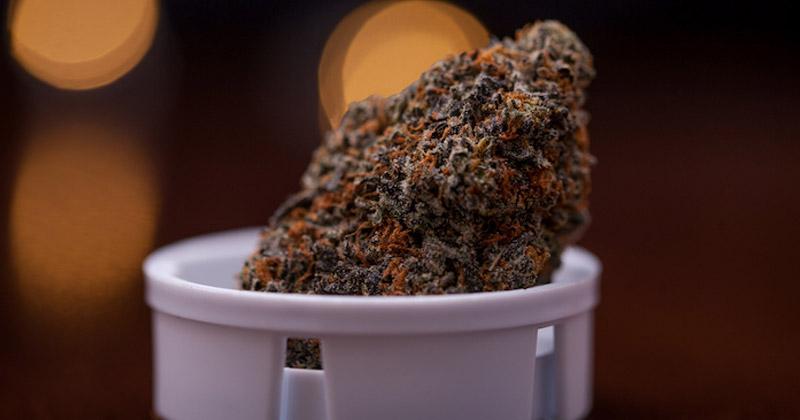 Cannabis médical en Allemagne