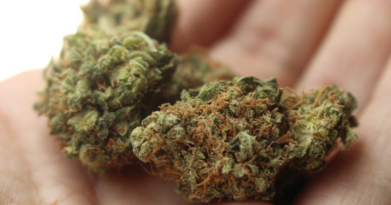 Cannabis médical en Roumanie