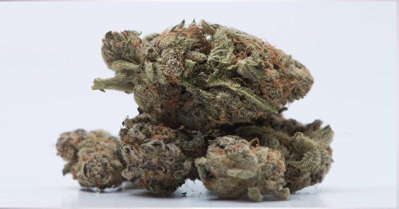 Cannabis au Québec