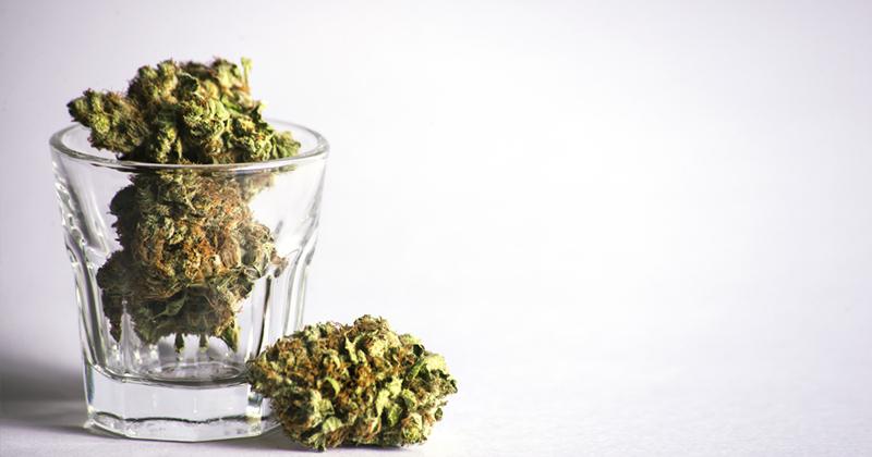 Effet du cannabis sur le cerveau