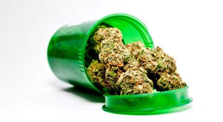 Effets thérapeutiques du cannabis